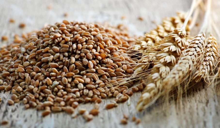 milyen gabonafélék fogyaszthatók magas vérnyomás esetén magas vérnyomás elleni gyógyszerek 2