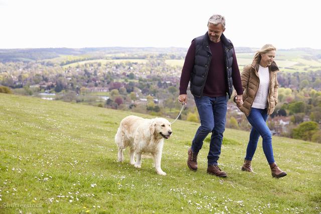 mit használ a gyaloglás magas vérnyomás esetén