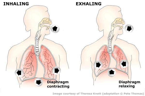 rekeszizom-légzés hipertóniával tachycardiával járó magas vérnyomás elleni gyógyszerek