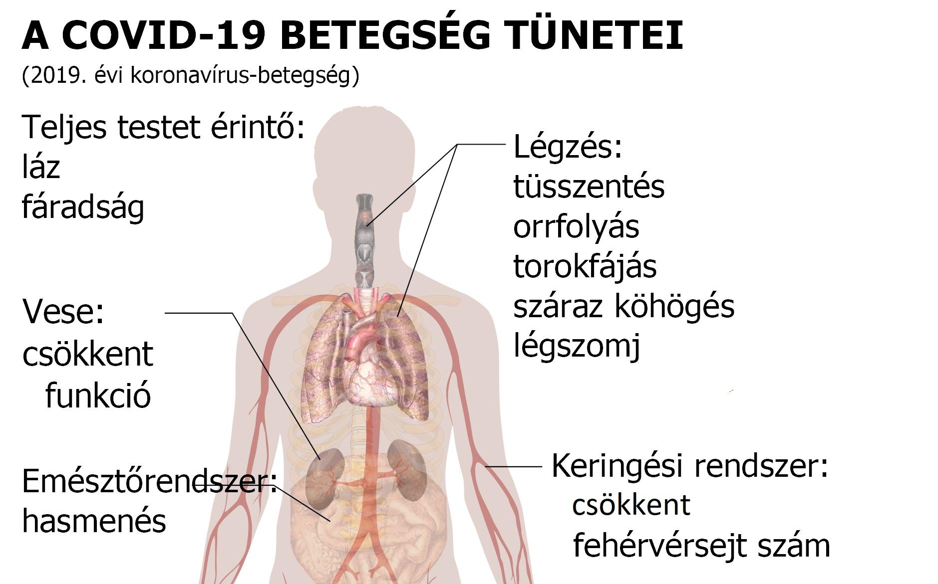 Köhögés kezelése