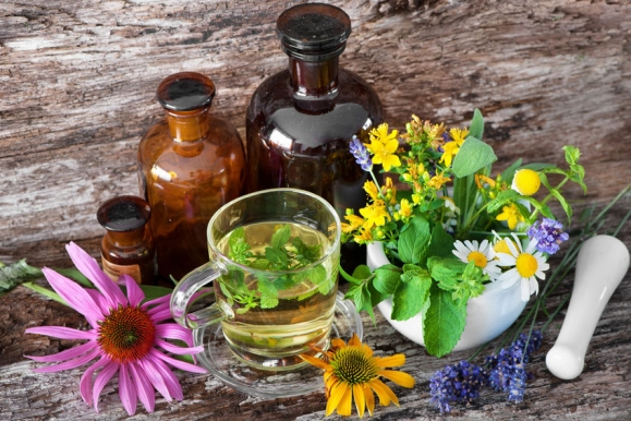 növények a magas vérnyomás kezelésében