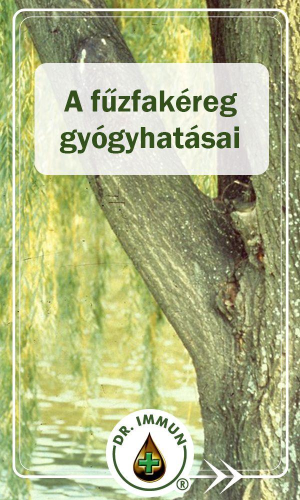 A Női Egészség Enciklopédiája - magton.hu