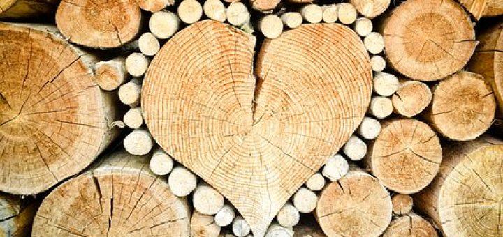 szív hipertónia gyógynövény