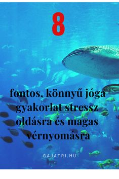 magas vérnyomású halak