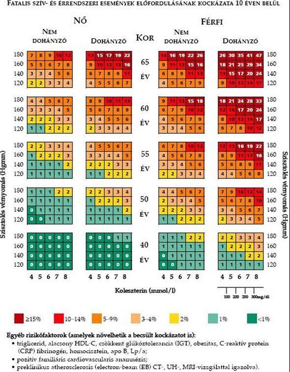 magas vérnyomás vérvizsgálat