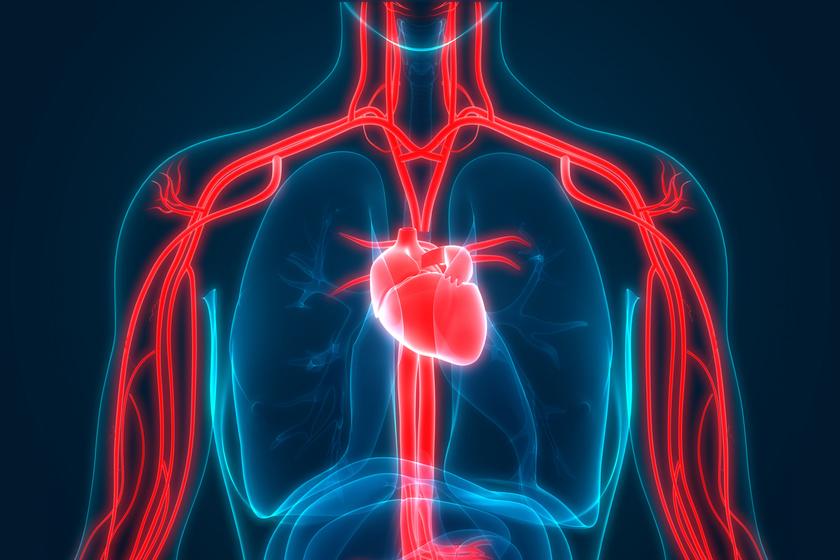 pokol magas vérnyomás 2 fok diuretikumok magas vérnyomás