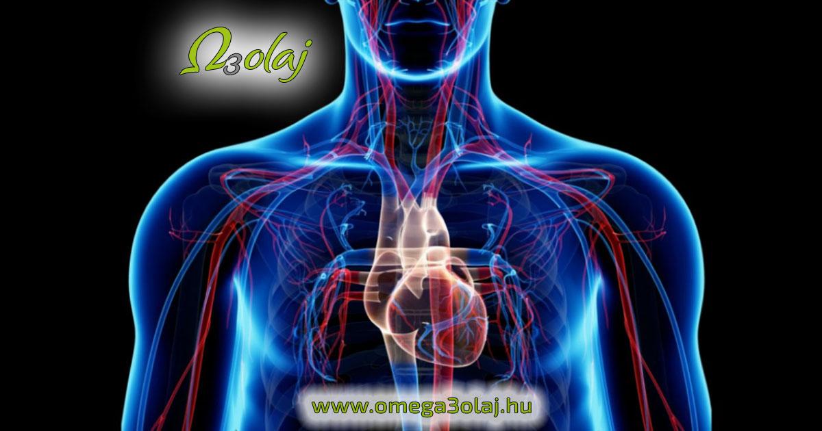 a szív- és érrendszer hatása magas vérnyomásban kardiológus és kardiológus kezeli a magas vérnyomást