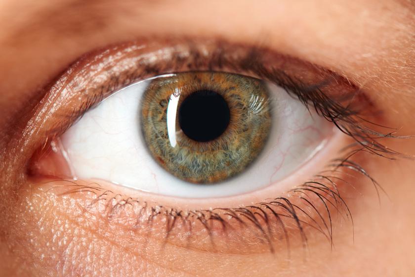 a szem magas vérnyomása az
