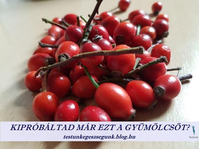 magas vérnyomás csipkebogyó gyümölcs magas vérnyomás kezelése férfiaknál