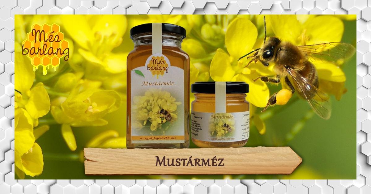 mezei méh és magas vérnyomás gyógyszerek a 2 fokozatú magas vérnyomás kezelésére