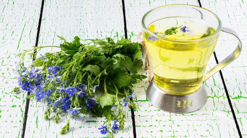 növények magas vérnyomás ellen
