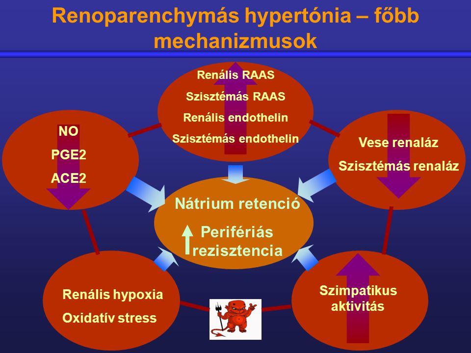 magas vérnyomás gyógyszer tenorikus asd 2 vétel magas vérnyomás esetén