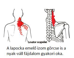 a nyak és a fej erek magas vérnyomásban arthrosis hipertónia kezelése