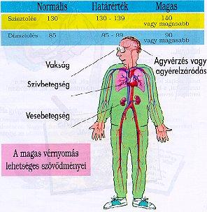 tanfolyam a magas vérnyomás kezeléséről magas vérnyomás egy vesével